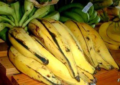 Banana da Terra